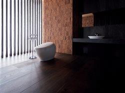toilet in stunning modern master bath