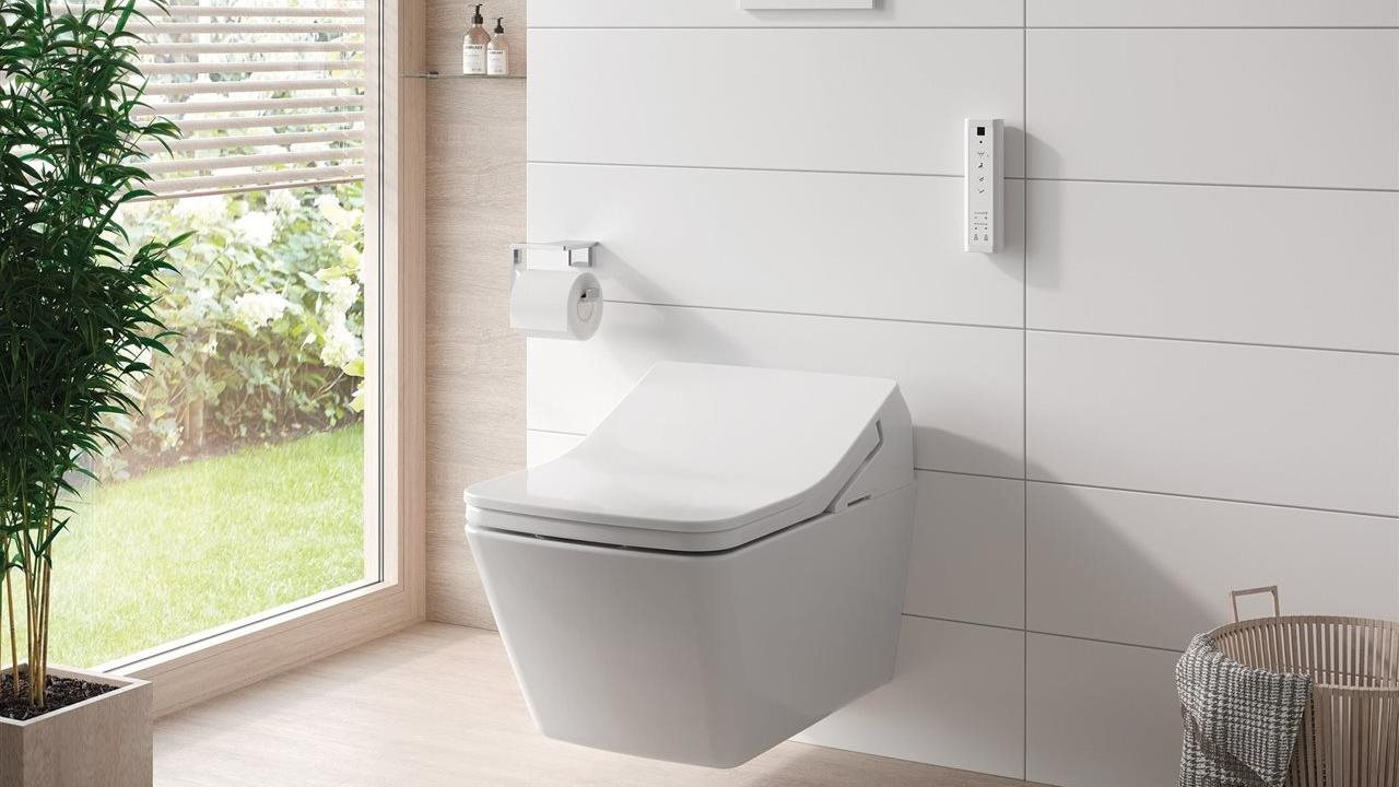 Wall hung dual fluch toilet