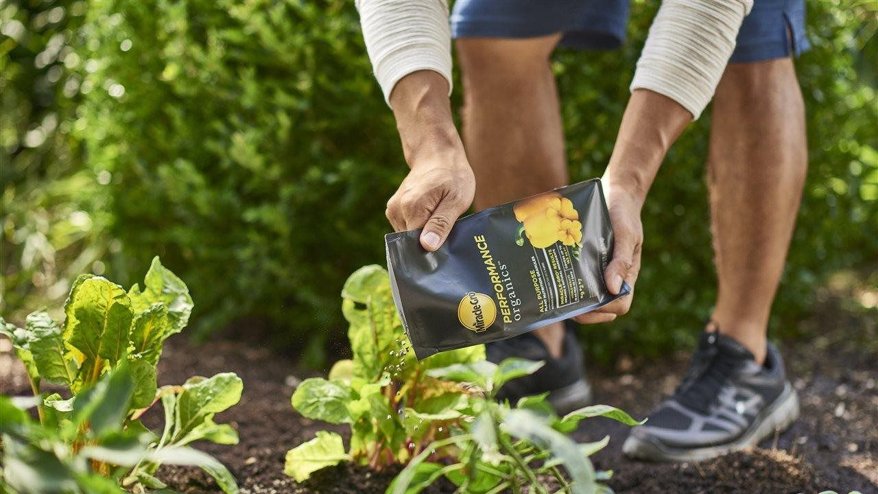 man using a gardening product to help plants in a garden