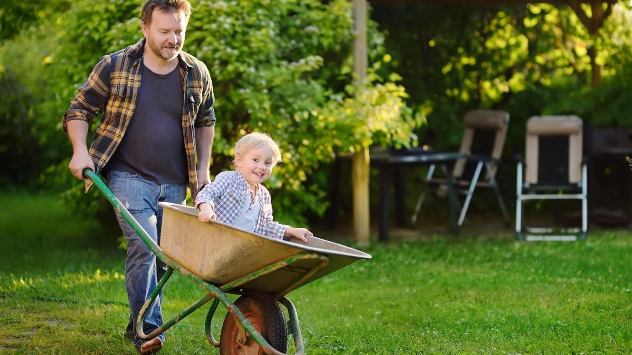 dad pushing wheel barrow in the back yard with kid in the bucket