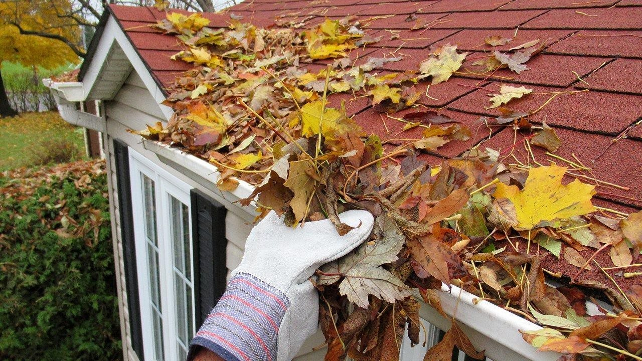 cleaning out gutter
