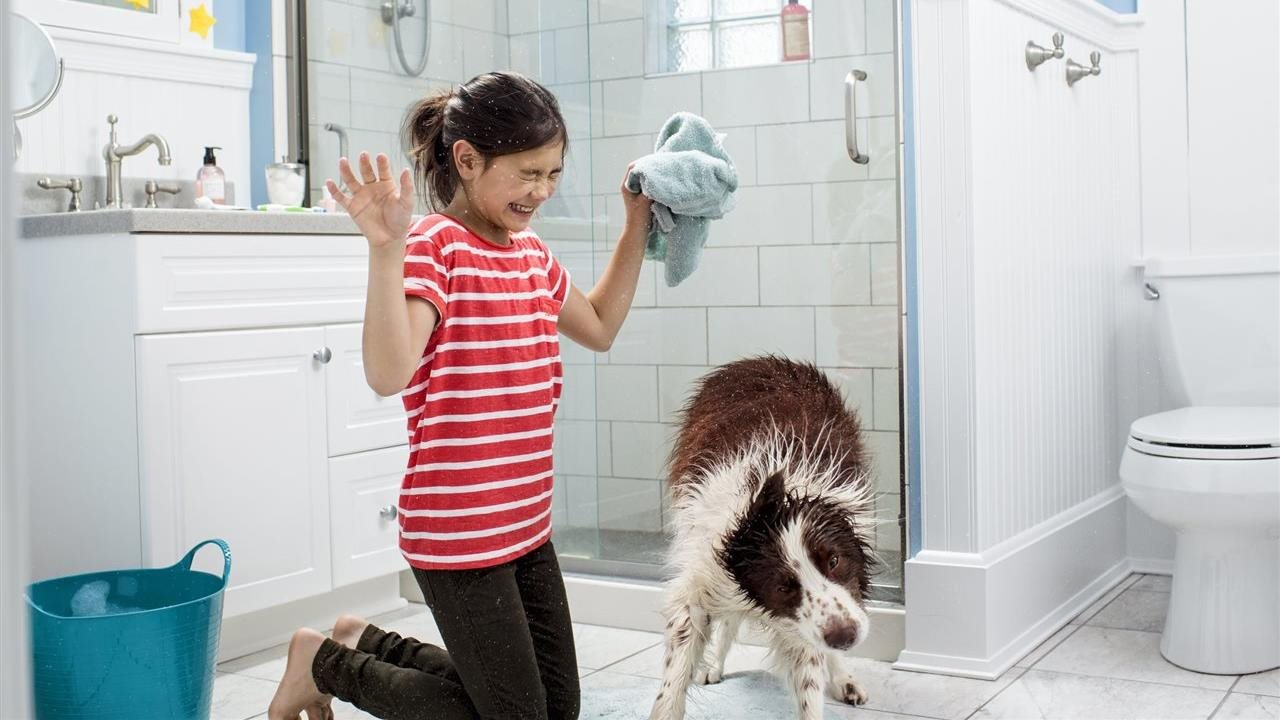 girl trying to dry a wet dog shaking off in a bathroom