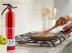 Fire extingisher next to a pan of food being cooked by a woman in the kitchen