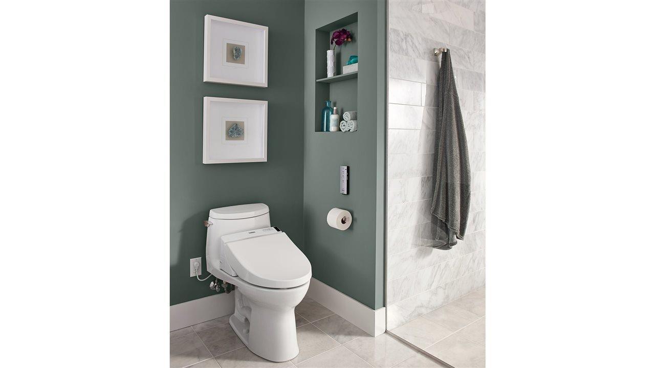 Toto Ultramax II toilet in upscale bath