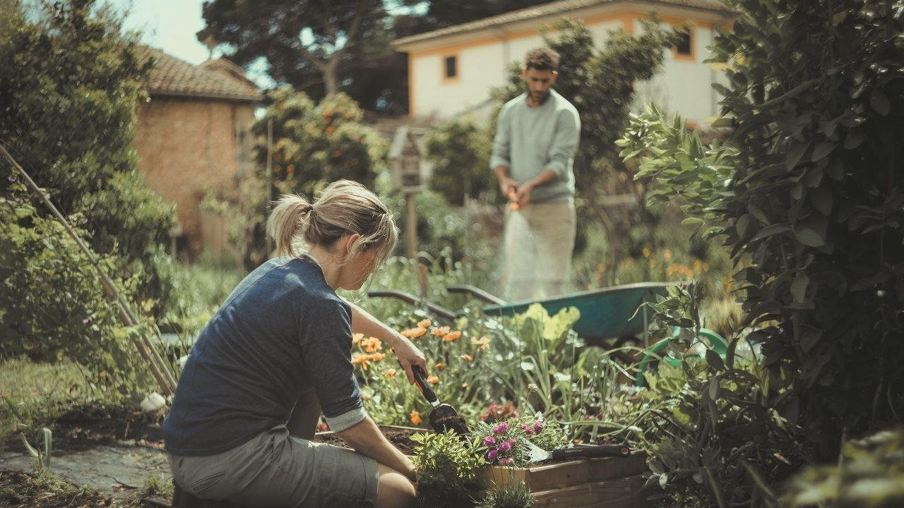woman planting in a summer garden