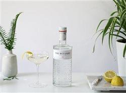 a bottle of The Botanist Gin, a martini and lemons on each side