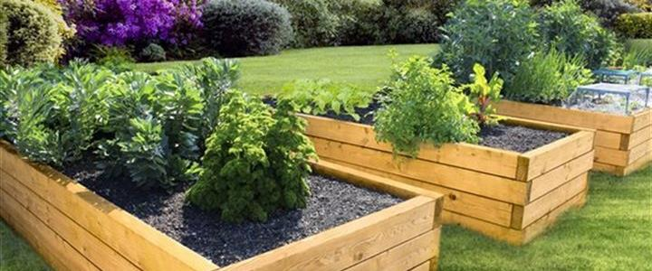Build A Lasting Memory With Your Backyard Project