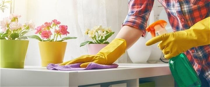 Woman cleaning counter with pretty flower pots on it