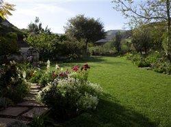 Perfect lawn in beautiful backyard