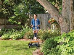 woman mowing the lawn in the backyard