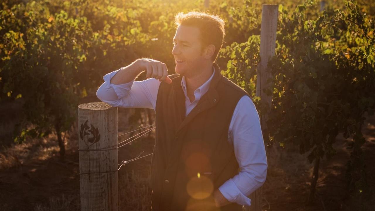 Man standing in a vinyard