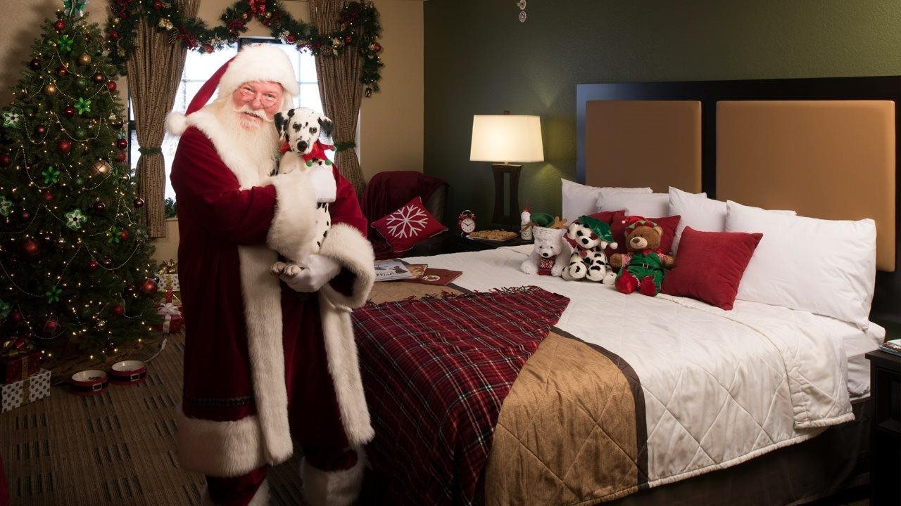 Santa holding a puppy in a hotel room