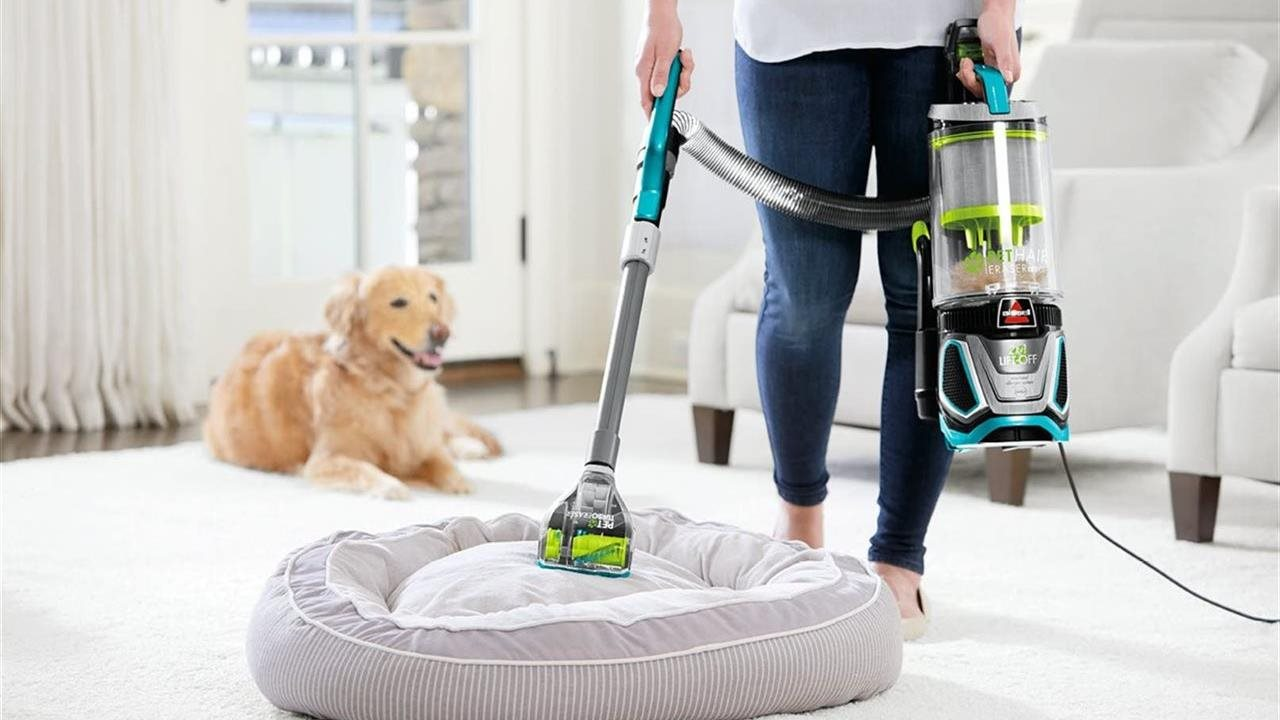 woman cleaning dog bed with vacuum