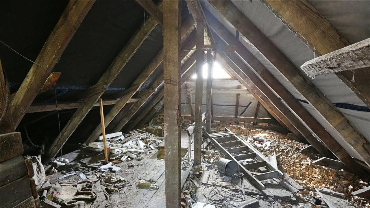 huge mes in attic of a house