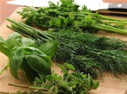 Herbs on a wooden cutting board
