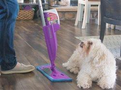 woman and dog cleaning the floor in a room