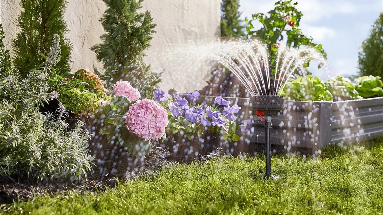 sprinkler watering the yard and garden