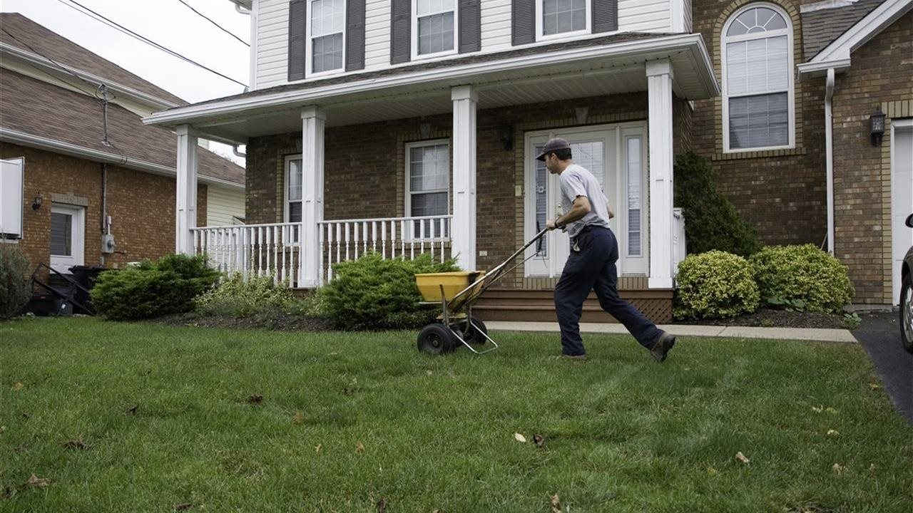 man using a spreader on the lawn