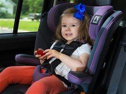 Child in a car seat