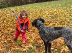 little girl playing with dog in Fall leaves